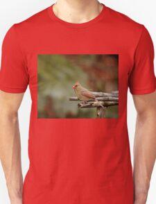 Cardinal Nest Building Unisex T-Shirt