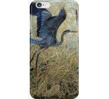 Blue Wings iPhone Case/Skin