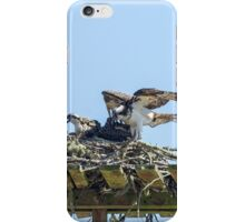 Osprey Family Portrait No. 1 iPhone Case/Skin