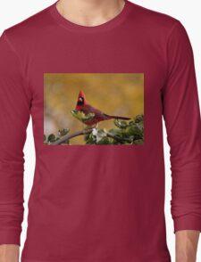Alarmed  Northern Red Cardinal Long Sleeve T-Shirt