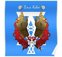 DNA Rubix Poster