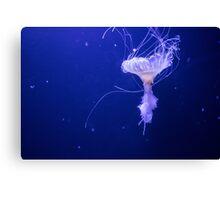 Under The Sea (2) Canvas Print