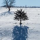 Tree And My Shadow by Deb Fedeler