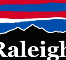 Raleigh Red White and Blue Sticker