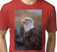 Eagle Profile Tri-blend T-Shirt