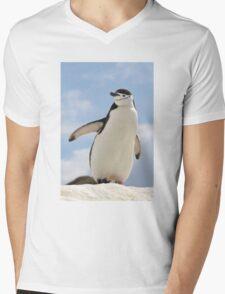 Chinstrap penguin keeps up appearances Mens V-Neck T-Shirt