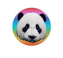 Rainbow panda Photographic Print