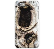 BeeHouse iPhone Case/Skin