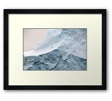 Wildlife and ice Framed Print