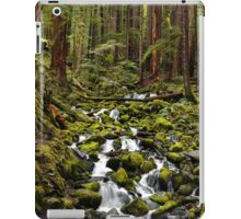 Olympic National Park Forest iPad Case/Skin