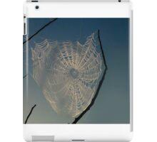 Wonderful Web iPad Case/Skin