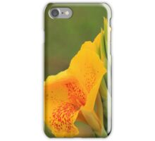 Blooming Flower in Yellow and Orange iPhone Case/Skin