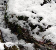 Winter Flow Sticker