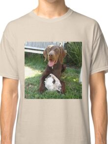 German Shorthaired Pointer Classic T-Shirt
