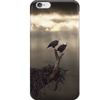 TWO BALD EAGLES AND STORM iPhone Case/Skin