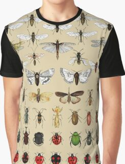 Entomology Insect studies collection  Graphic T-Shirt
