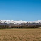 The Ochil Hills in Clackmannanshire by Jeremy Lavender Photography
