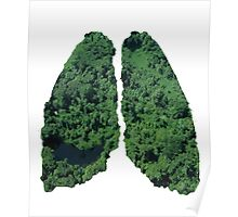Natural lungs Poster