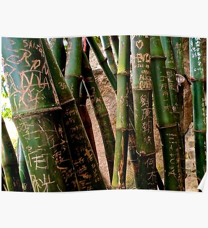 bamboo city Poster