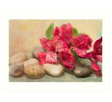 Rocks On The Lily Of The Incas Art Print