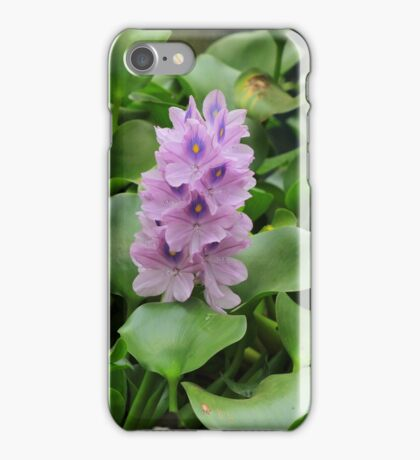 Flowers and Butterflies in a Garden iPhone Case/Skin