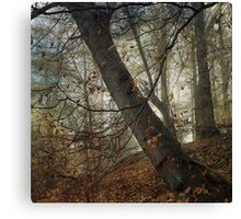 The Last Breath of Autumn Canvas Print