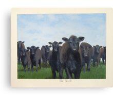 9 black cows: the Court Canvas Print