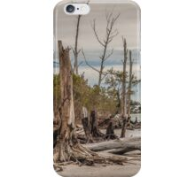 Driftwood and Stumps  iPhone Case/Skin