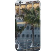 Lamps, Fronds, And Life Boats iPhone Case/Skin