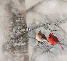 Waiting for Spring by Angela Tice Gunn