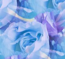 Blue Love by lillianhibiscus