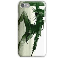 Spin Attack Zelda iPhone Case/Skin