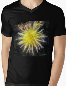 Celestial Blossoms Mens V-Neck T-Shirt