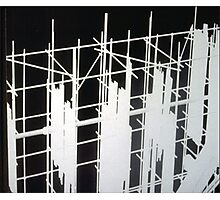 Scaffold Photographic Print