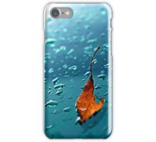 Leaf - on the windshield (2010) iPhone Case/Skin