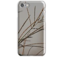 BEauty And CHarm iPhone Case/Skin