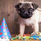 Happy Birthday Blank Greeting Card by Edward Fielding
