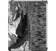 Yosemite Teneya Lake (Tioga Pass) Plate 5 iPad Case/Skin