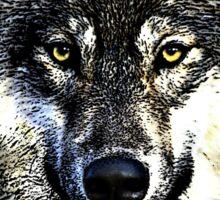 Wolf 4 Sticker
