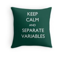 Calculus Keep Calm Message Throw Pillow