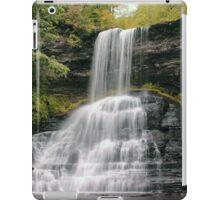 Cascades Waterfall- VA iPad Case/Skin