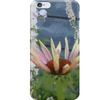 Echinacea Blossoms iPhone Case/Skin