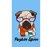 Pugkin Spice Photographic Print