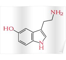 Serotonin Poster