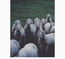 Sheep gang landscape animal photography Unisex T-Shirt