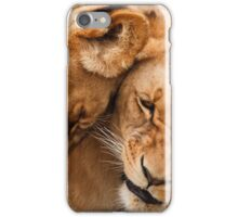Cute lions iPhone Case/Skin