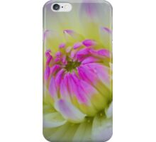 Glorious Appearing; White Dahlia with Lavender Hued Center iPhone Case/Skin