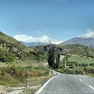 On The Treble Cone Road ( 1 ) by Larry Lingard-Davis