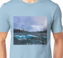 Portage Valley Alaska Unisex T-Shirt