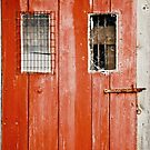 Red Door by George's Page